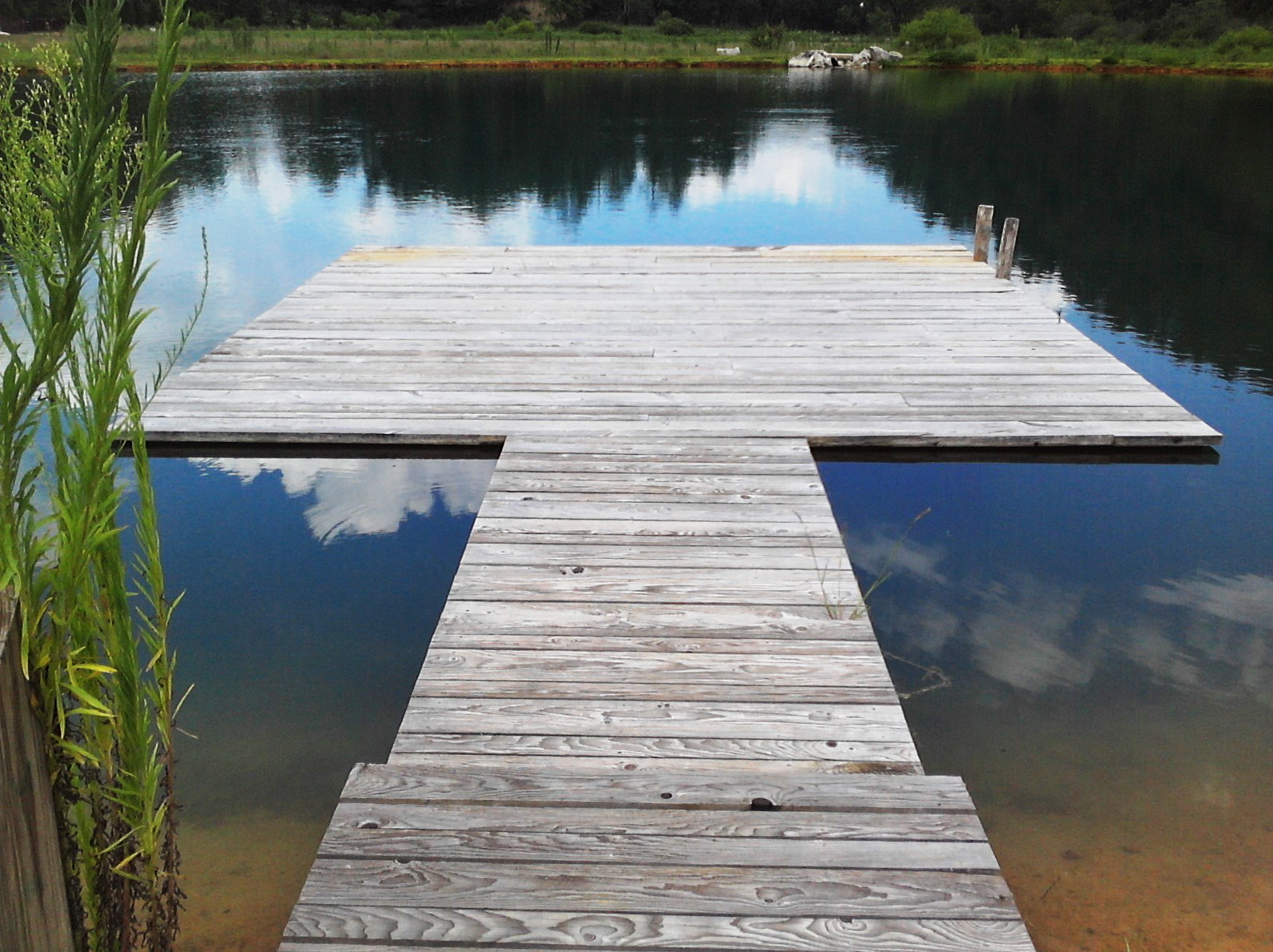 Dock on the Pond Pure Water Farm near Gatlinburg TN