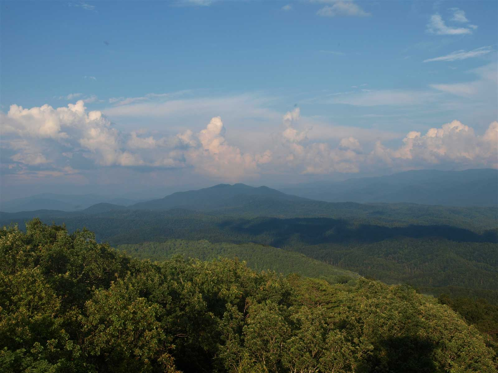 Look Rock Webcam - Smoky Mountain National Park