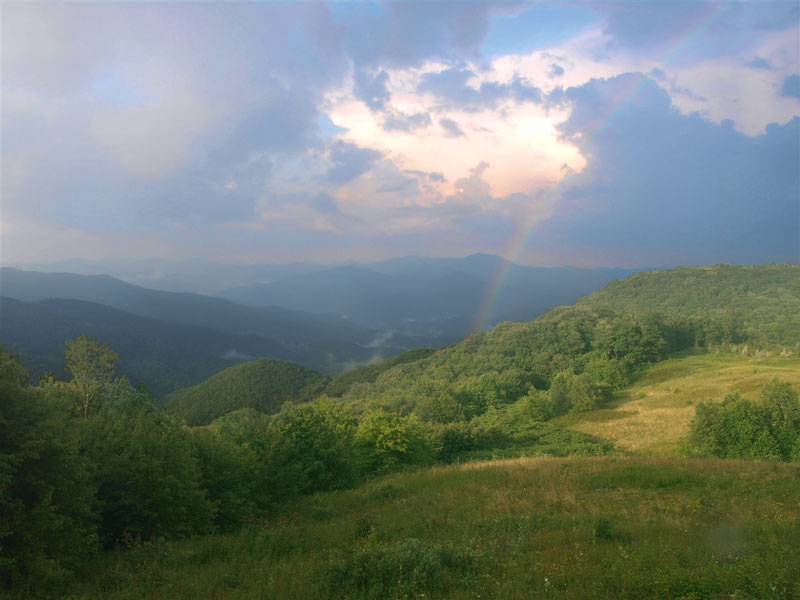 Purchase Knob Webcam - Smoky Mountain National Park